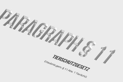 Title Paragr 11